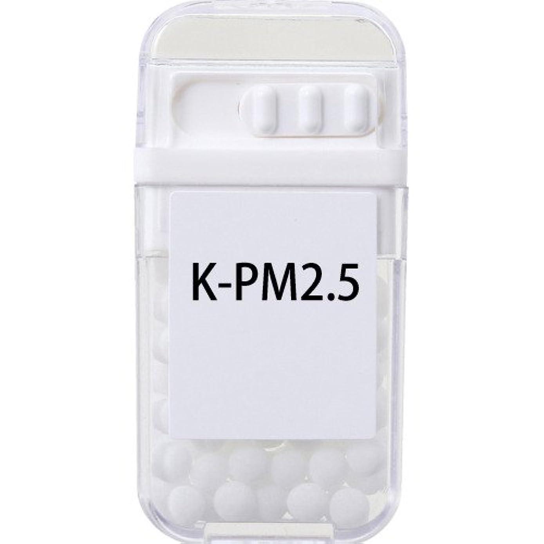 発見パフとらえどころのないホメオパシージャパンレメディー K-PM2.5  (大ビン)