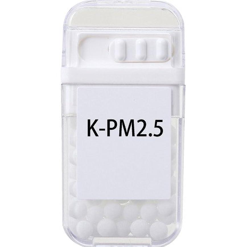 ちっちゃい絶妙教育者ホメオパシージャパンレメディー K-PM2.5  (大ビン)