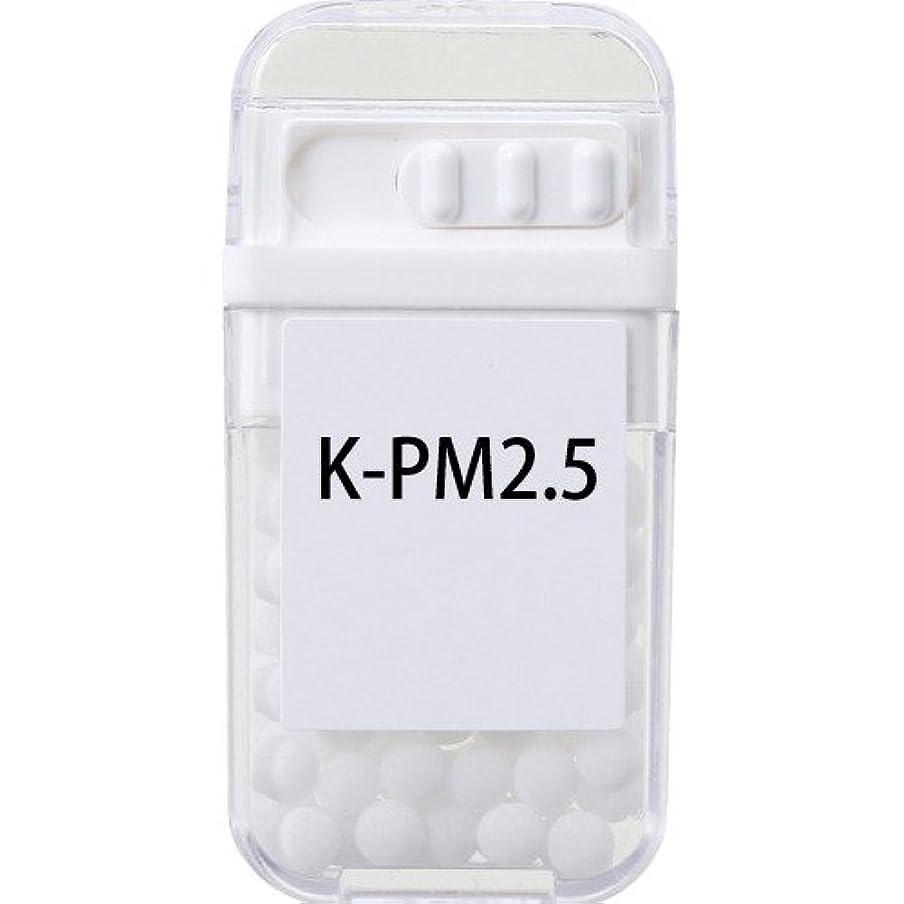 振り子子供達とは異なりホメオパシージャパンレメディー K-PM2.5  (大ビン)