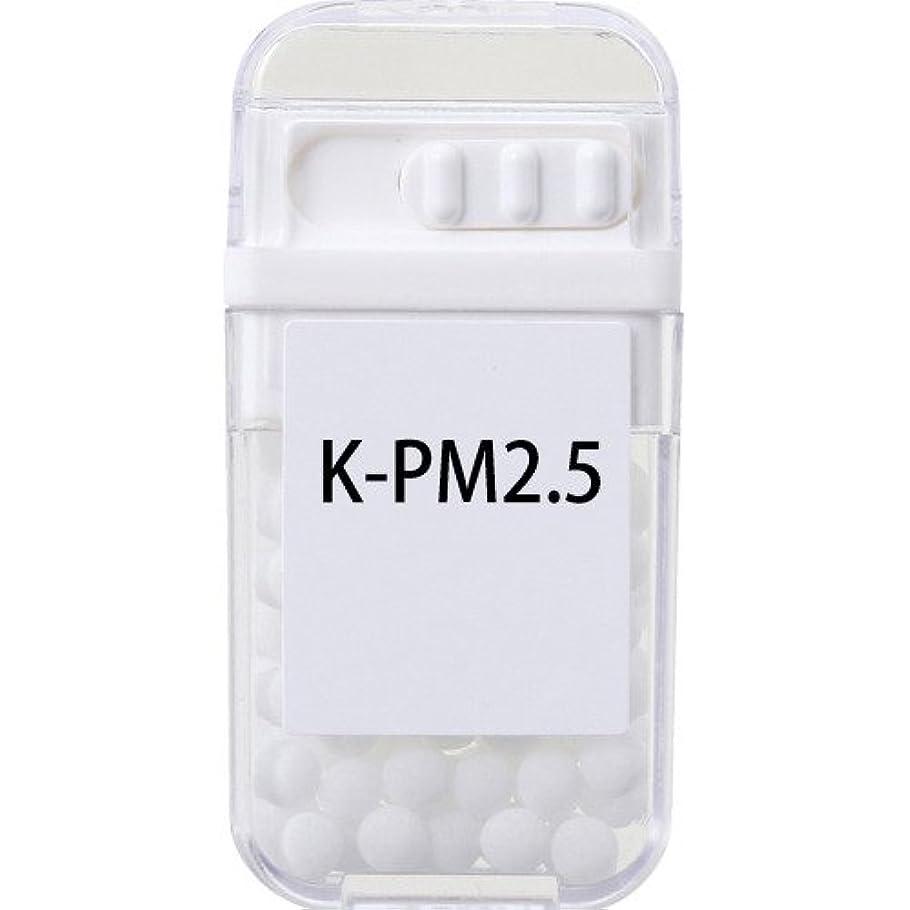 編集者毎月傾向ホメオパシージャパンレメディー K-PM2.5  (大ビン)