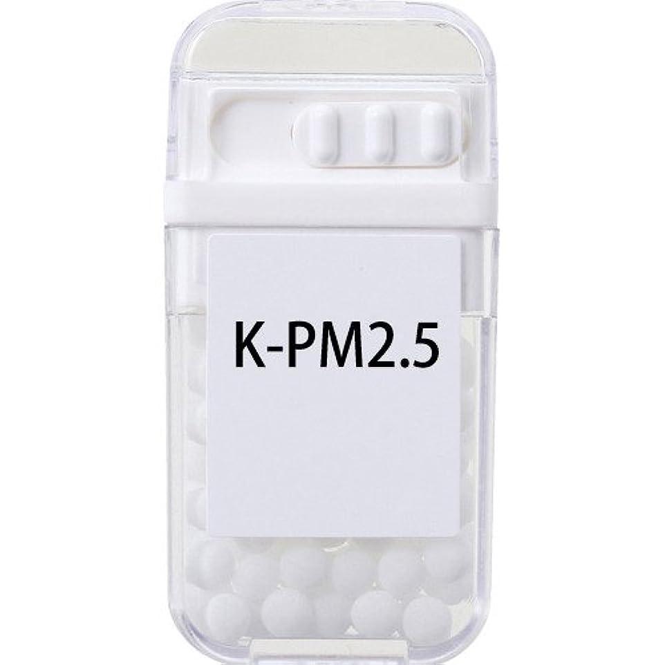 ホメオパシージャパンレメディー K-PM2.5  (大ビン)