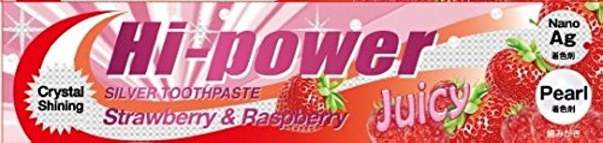 保全雑品主流ハイパワー 歯みがき ラズベリー&ストロベリー (120g)