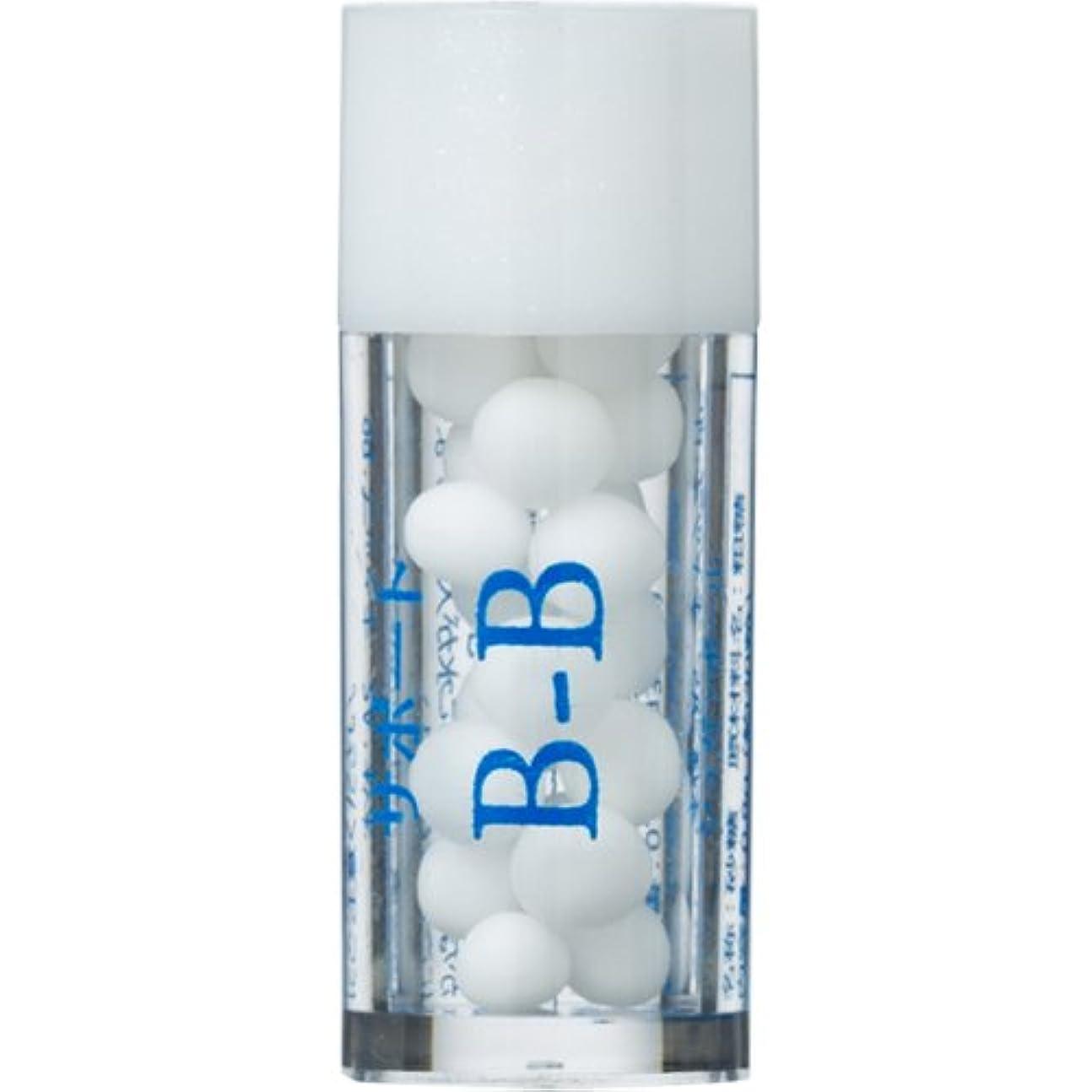 途方もないプラスチックシリアルホメオパシージャパンレメディー バース35 サポート B-B