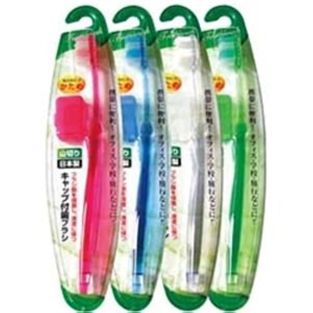 種インフレーション塩辛いキャップ付歯ブラシ山切りカット(かため)日本製 【12個セット】 41-210