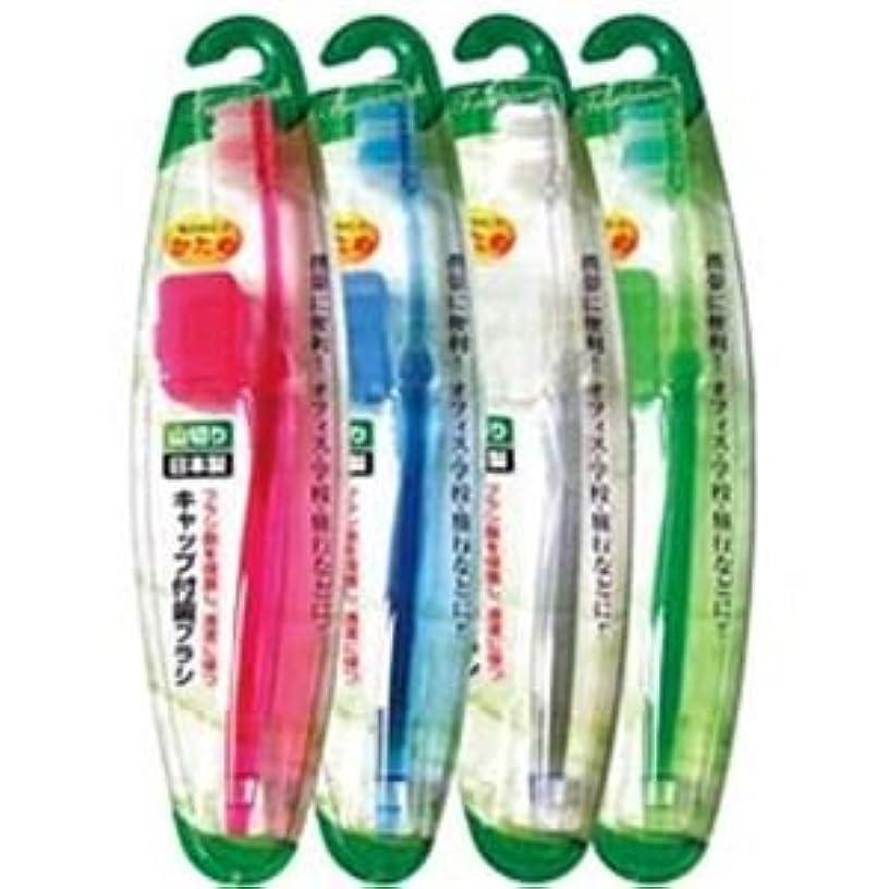 ただやる寛大さはいキャップ付歯ブラシ山切りカット(かため)日本製 【12個セット】 41-210