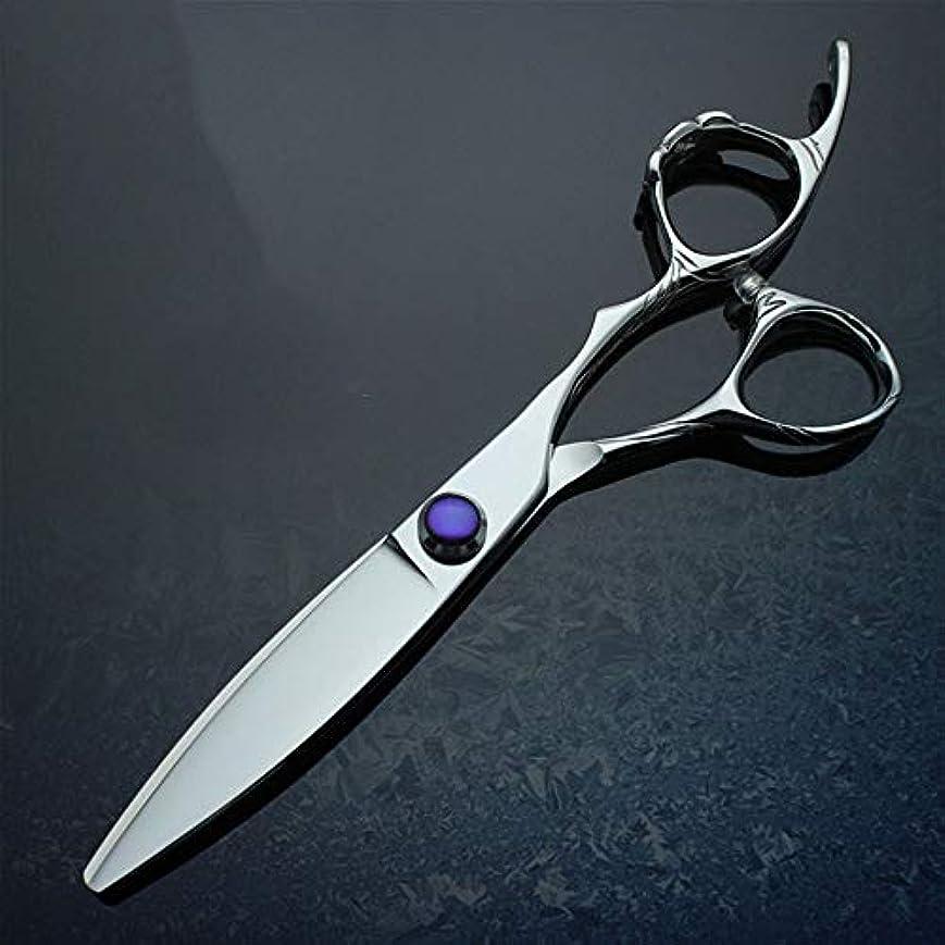 データムパワー意味WASAIO アクセサリー間伐ヘアカットはさみシアーズキット理容サロンレイザーカットウィロービッグファットシザー6インチをトリミング美容専門の理髪ツール (色 : 紫の)