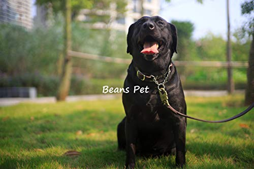 Beans Pet 犬 首輪 ハーフチョーク 本革 中型犬 大型犬 スタンダード 機能性 トレーニング 可愛い オシャレ 高品質 丈夫 7枚目のサムネイル
