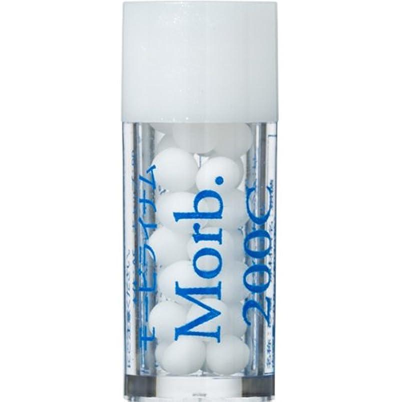 危険にさらされている薄いです肌寒いホメオパシージャパンレメディー YOBO26 Morb. モービライナム 200C