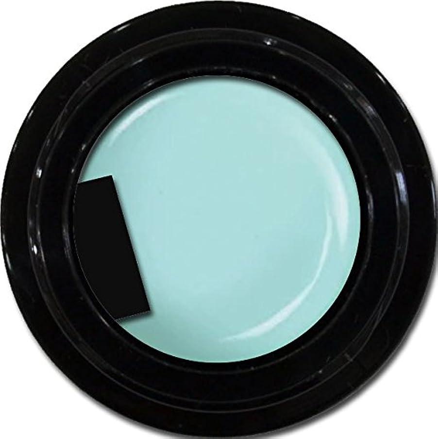 探偵感性俳句カラージェル enchant gel color gel S702 SheerFountain 3g/ エンチャントジェル カラージェル シアーファウンテン 3グラム