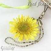 生花で作られた誕生花**リアルフラワー携帯ストラップ(2月/タンポポ)