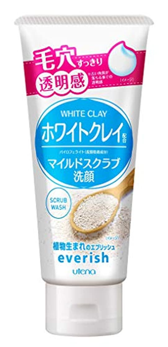 応用スキーム変数エブリッシュ ホワイトクレイスクラブ洗顔