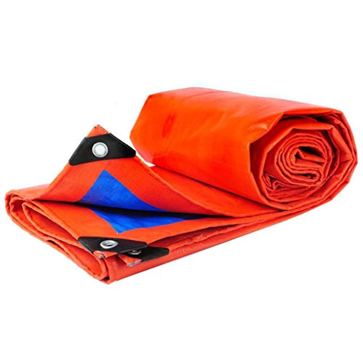 告発者レジデンス急流防水シート防水日焼け止め肥厚雨シェード布絶縁ポンチョプラスチックpeキャノピーキャンバスターポリン (Color : Blue and orange, Size : 3x5m)