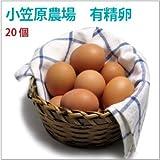 たまご 有精卵 小笠原さんの 平飼 自然養鶏 の 卵 20個