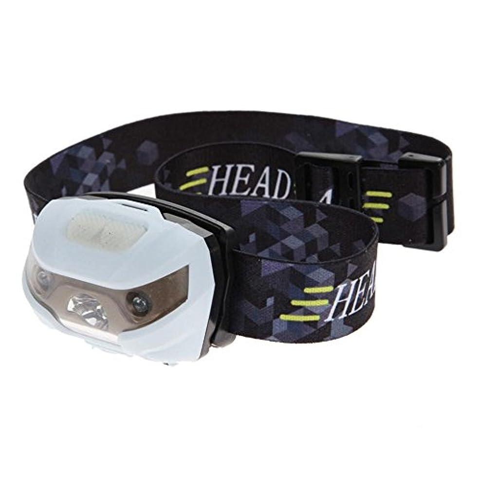 中世のスーダン効率?新型 4000LM 防水 5 モード ヘッドライト ヘッドランプ キャンプ用明るいライト + USB ケーブル ホワイト