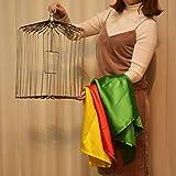 ◆手品?マジック◆スカーフから出現する鳥籠◆H5236