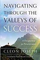 Navigating Through the Valleys of Success: A Perspective in Perseverance