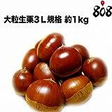 【愛媛県産】大粒生栗3L規格 約1kg