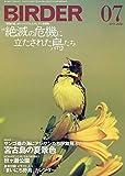 BIRDER(バーダー)2019年7月号 絶滅の危機に立たされた鳥たち【巻末付録 イラスト入り「まいにち野鳥」カレンダー 2019 下半期(7〜12月)付き】