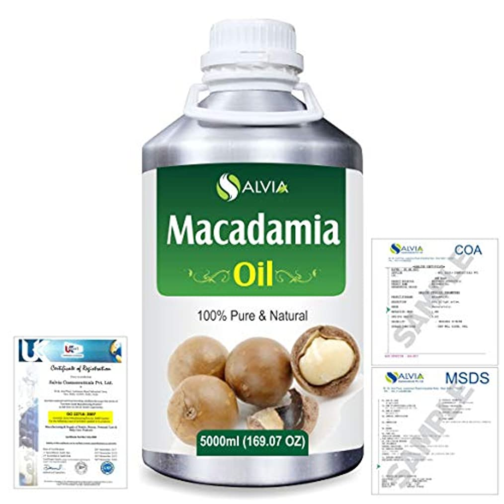 六後ろ、背後、背面(部ダイエットMacadamia (Macadamia Integrifolia) Natural Pure Undiluted Uncut Carrier Oil 5000ml/169 fl.oz.