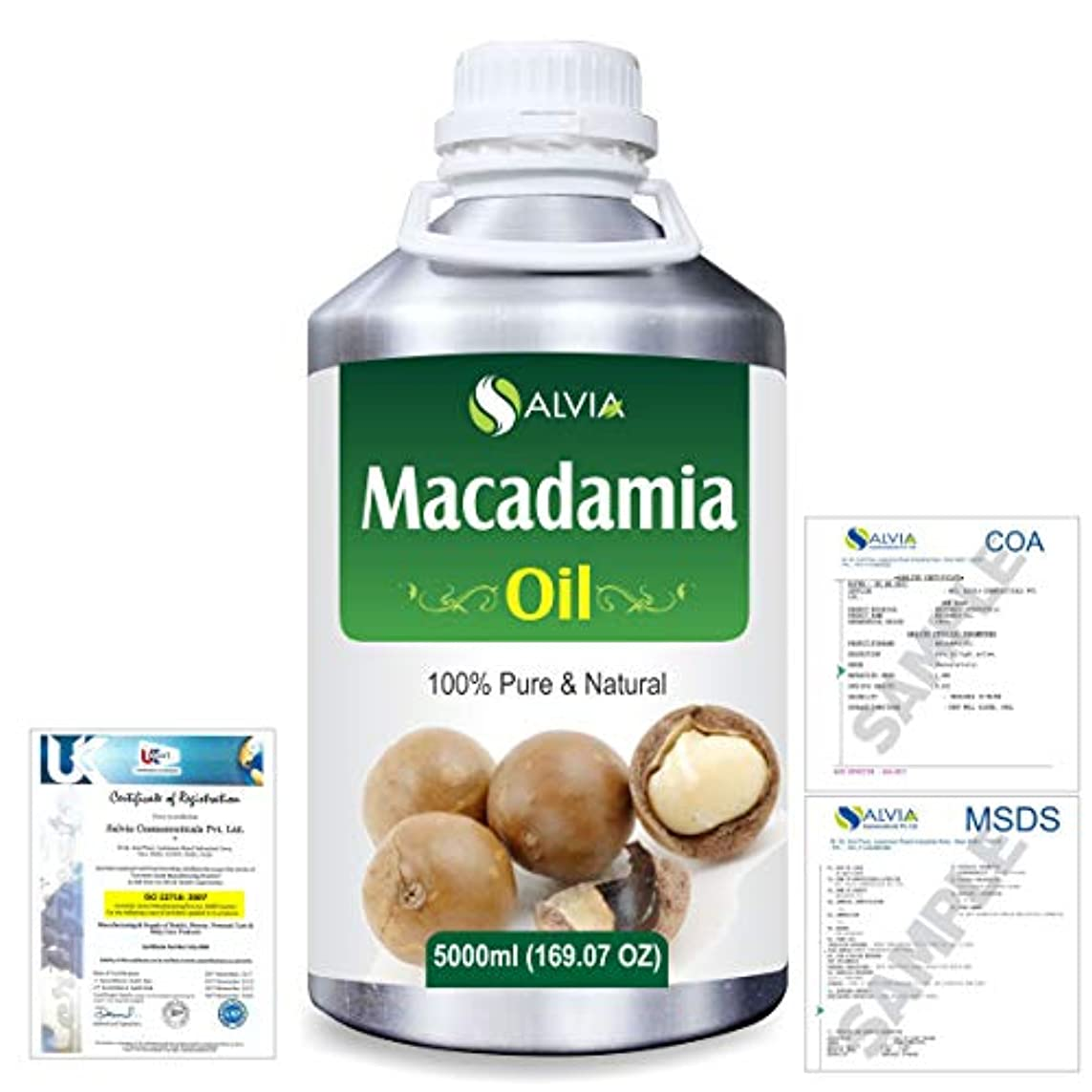 宿題をするビーム電気陽性Macadamia (Macadamia Integrifolia) Natural Pure Undiluted Uncut Carrier Oil 5000ml/169 fl.oz.