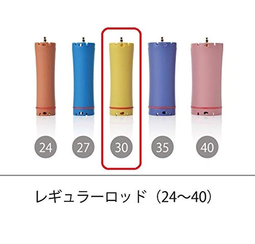 犯罪煙水っぽいソキウス 専用ロッド レギュラーロッド 30mm