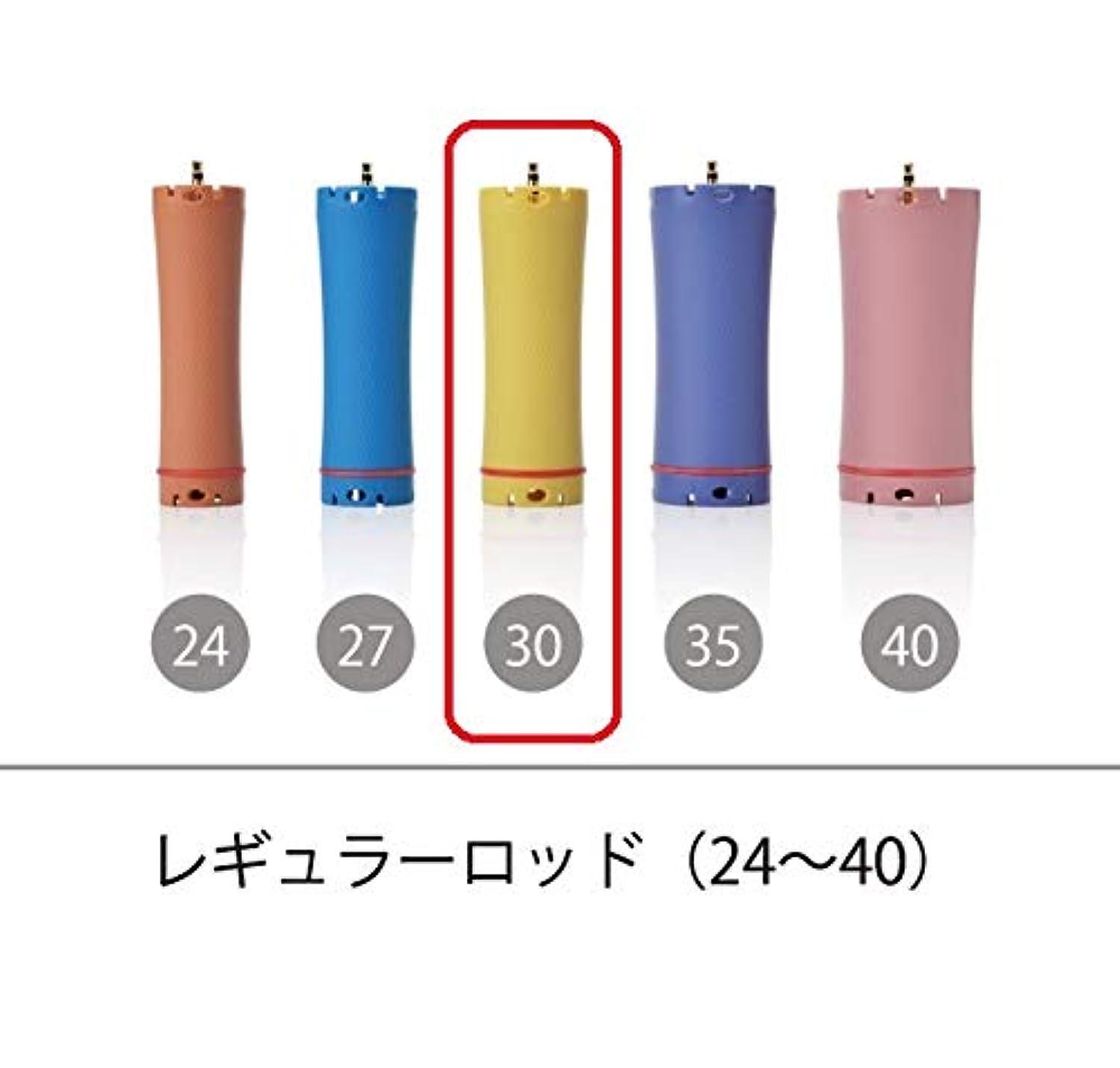 トリプルレースレザーソキウス 専用ロッド レギュラーロッド 30mm