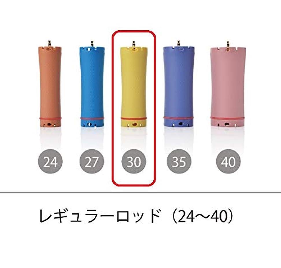 インセンティブ巡礼者監査ソキウス 専用ロッド レギュラーロッド 30mm