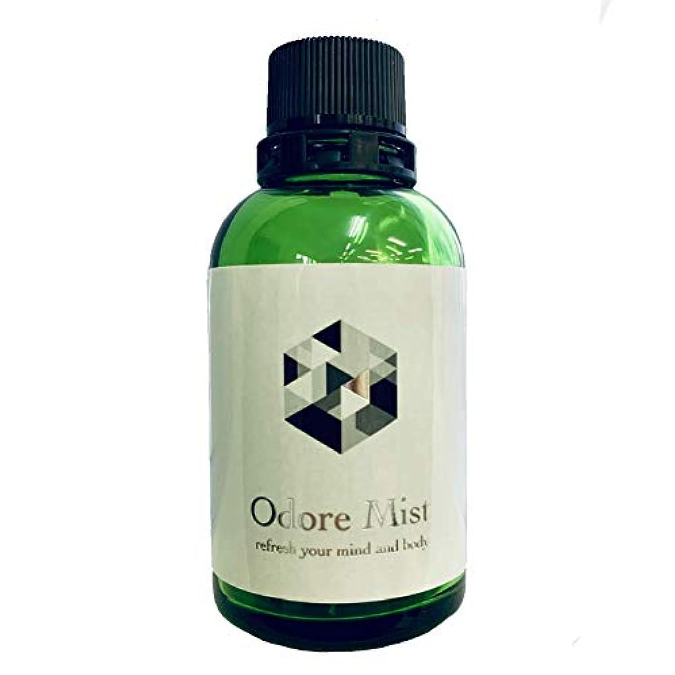美的茎寄稿者オドレミスト60ml(詰め替え用?ミストポンプなし) 塩化アルミニウム13%配合デオドラント スプレー