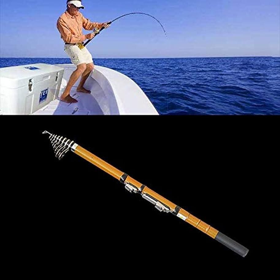 資金ジョットディボンドン敬礼WTYD アウトドア釣り用品 50cmポータブルテレスコピック冬の釣り竿釣りタックルポール、延長長さ:2.7m アウトドアに使う