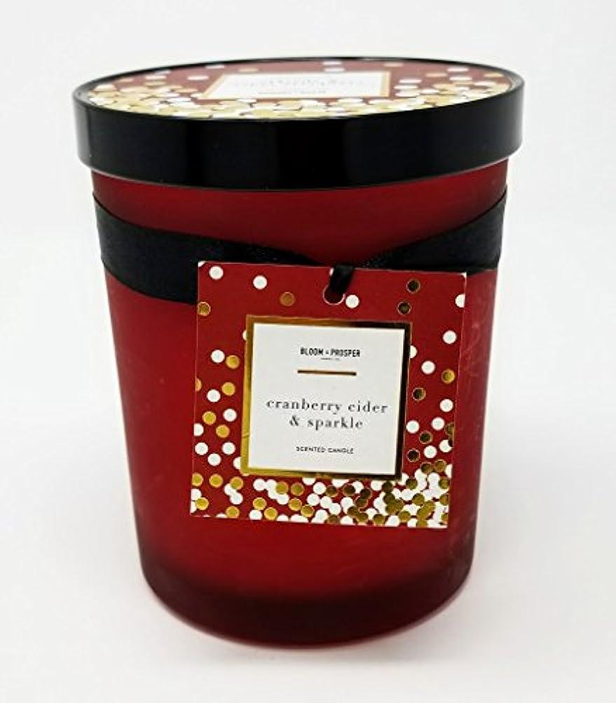 倍増穿孔するハンドブックBloom & Prosper豊かな香りキャンドル – クランベリーCider and Sparkle – 14.535 Oz