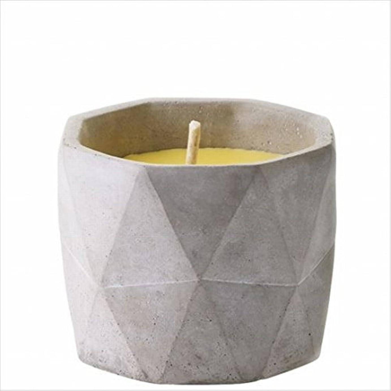 くつろぎ大腿アフリカカメヤマキャンドル(kameyama candle) POiNT A LA LiGNE セメントポット シトロネラキャンドルM(屋外用)