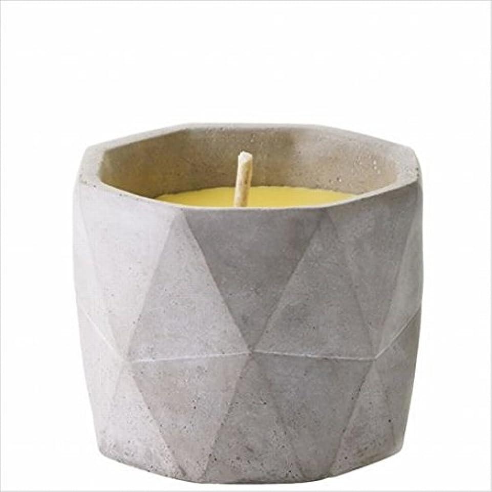 文言経営者送信するカメヤマキャンドル(kameyama candle) POiNT A LA LiGNE セメントポット シトロネラキャンドルM(屋外用)