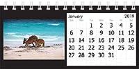 写真デスクトップカレンダー 2019 オーストラリアのビーチとサンセット 8.25インチ x 4.5インチ