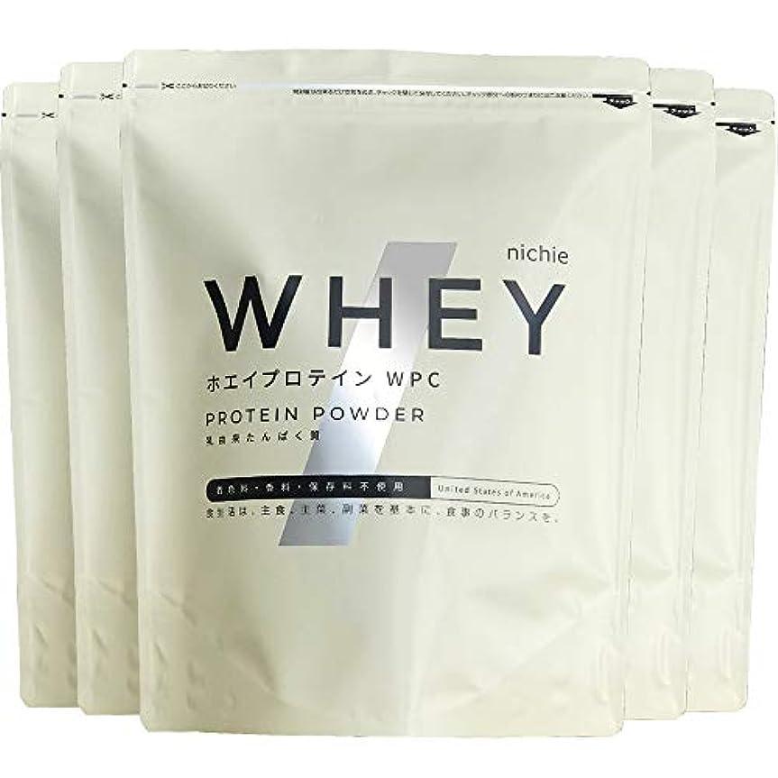 少ない保護する蛾nichie ホエイプロテイン WPC たんぱく質約80%(無水換算) アメリカ産 プレーン 5kg(1kg×5袋)