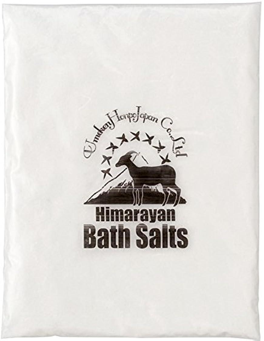 壊れた理論的額ヒマラヤ岩塩 バスソルト ホワイト あら塩 1kg