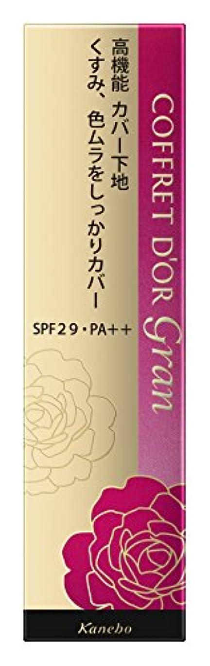 達成可能プリーツ算術コフレドール グラン 化粧下地 カバーフィットベースUV SPF29/PA++ 25g