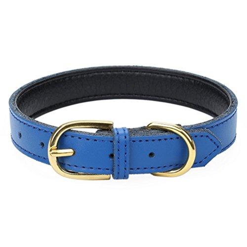 Mcdobexy 犬首輪 犬の首輪 ベーシック11色 5穴 調節 可能 パッド入り本革 かわいい おしゃれ 中型犬...