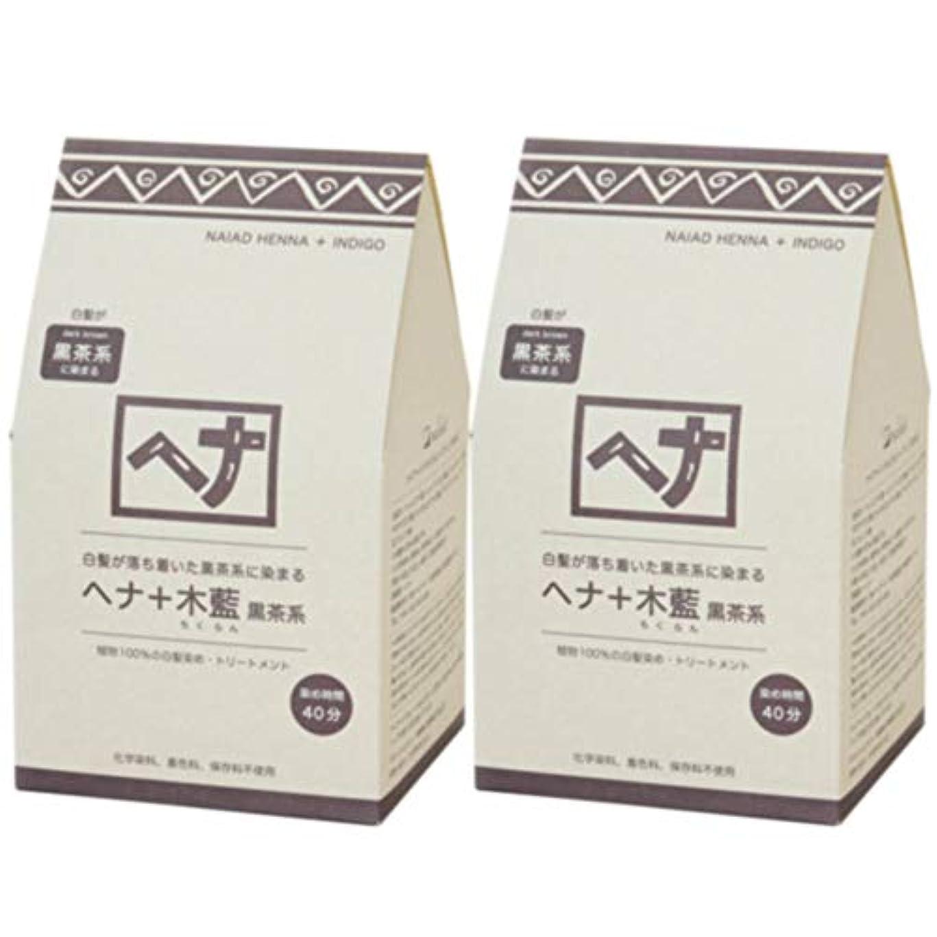 軽くことわざ行列ナイアード ヘナ+木藍 黒茶系 400g◆2個+【ヘアキャップ&耳キャップ】セット