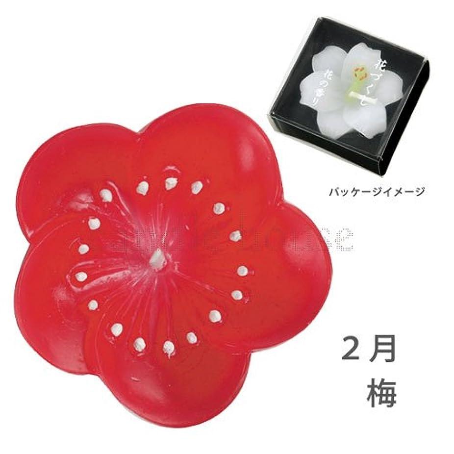 こっそりタンザニアカメヤマキャンドル 花づくし(梅)