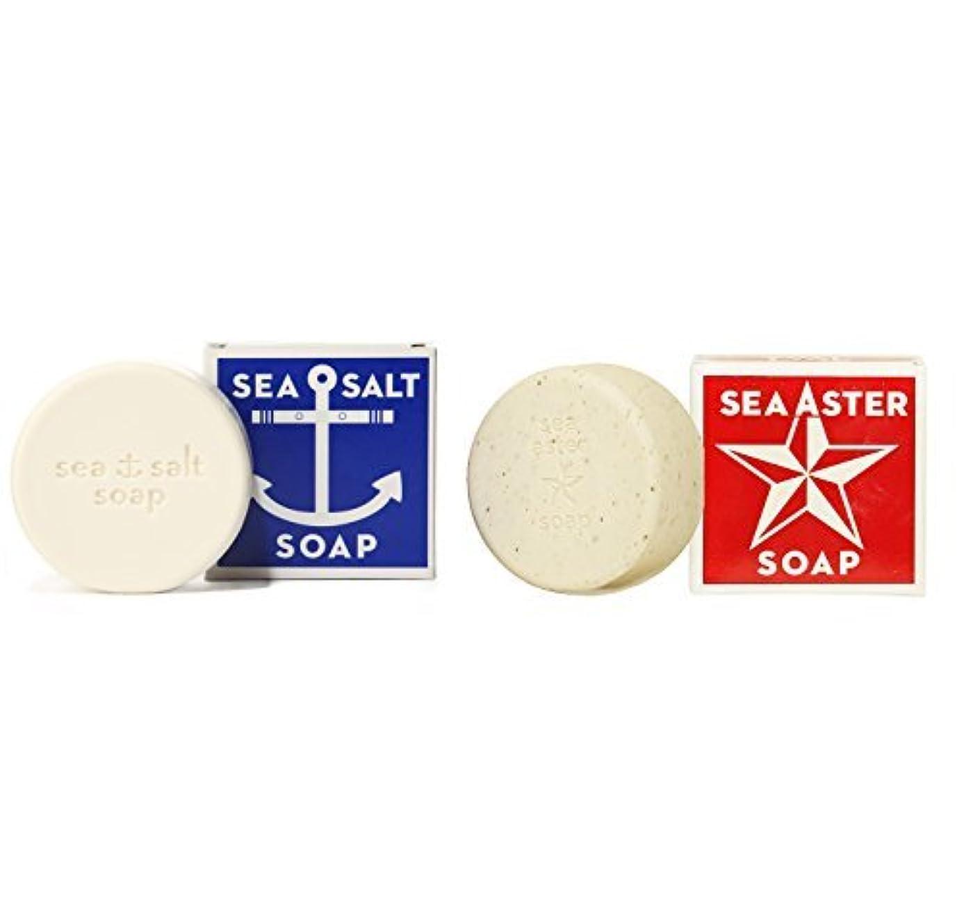 怒り作りますバンクSwedish Dream Sea Salt + Sea Aster Soap Bar by Kala by Swedish Dream [並行輸入品]