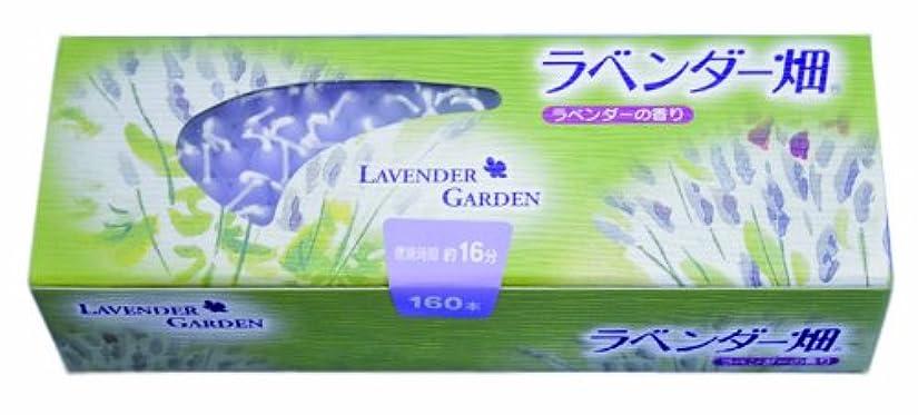 エールマッシュ文キャンドル ラベンダー畑16分 ラベンダーの香り