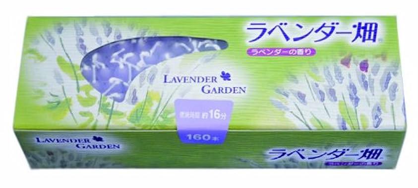 解任ロードされた構造的キャンドル ラベンダー畑16分 ラベンダーの香り
