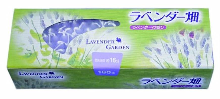 薬用ボトルネックフォームキャンドル ラベンダー畑16分 ラベンダーの香り