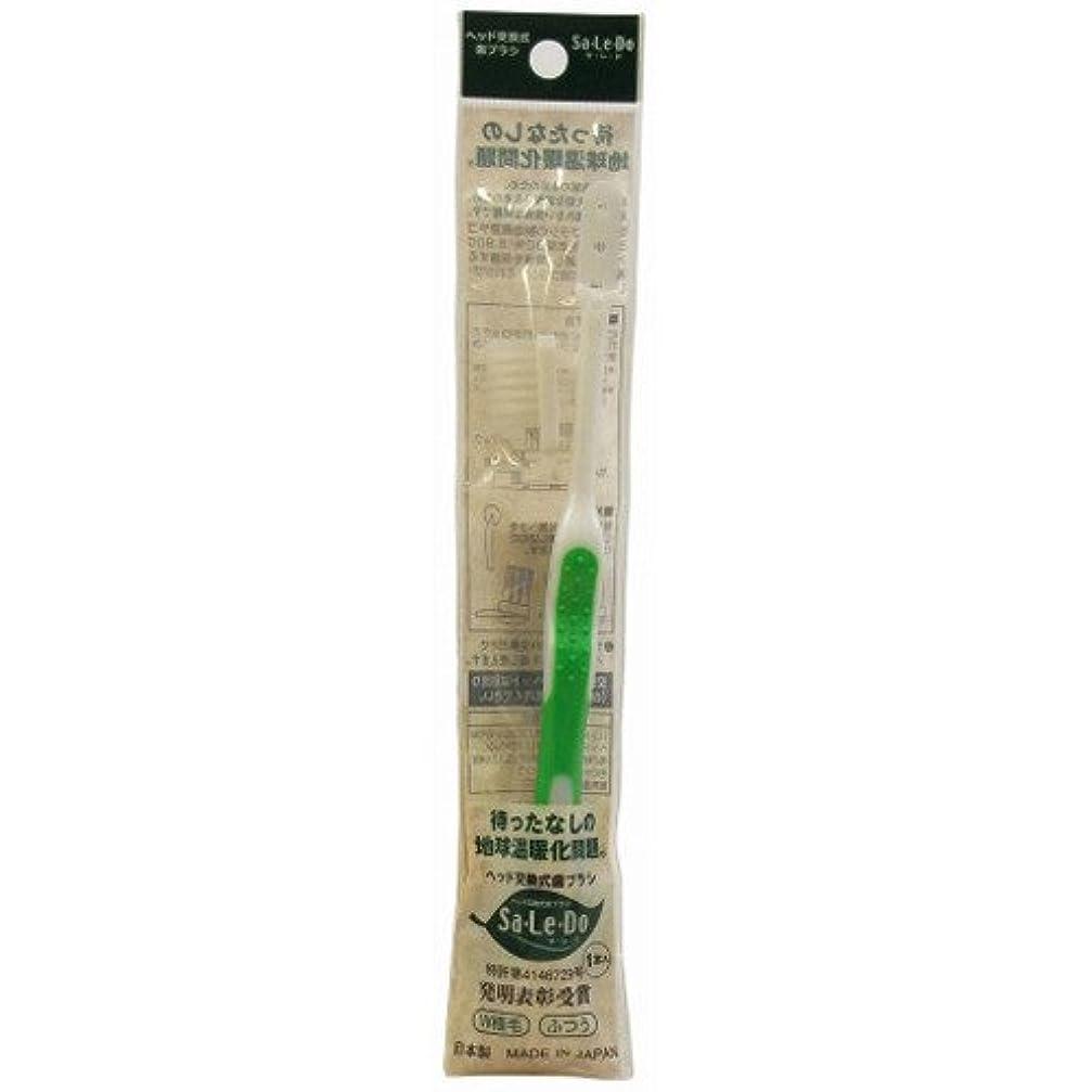 共役修正するトランジスタサレド ヘッド交換式歯ブラシ お試しセット レギュラーヘッド グリーン