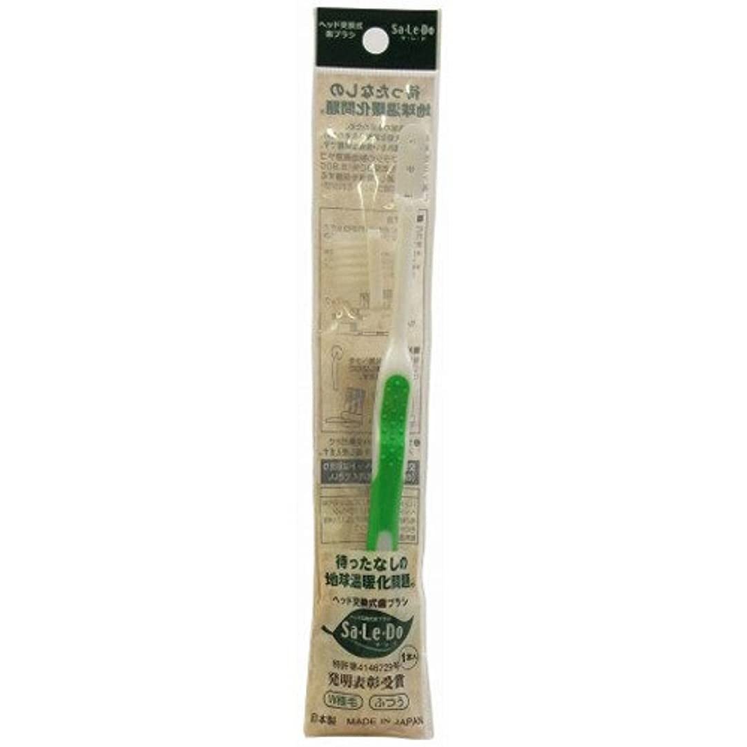 モスクラフ睡眠役に立つサレド ヘッド交換式歯ブラシ お試しセット レギュラーヘッド グリーン