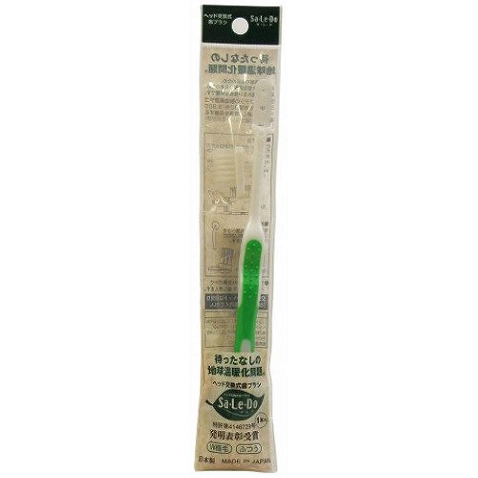 宿泊施設グレード発掘するサレド ヘッド交換式歯ブラシ お試しセット レギュラーヘッド グリーン
