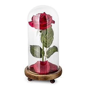 Louis Garden 造花「美女と野獣」という完全なセット、丸いガラスドームカバーでレッドのシルクバラをカバーし、LED照明と花びらは木製のベースに落ちる