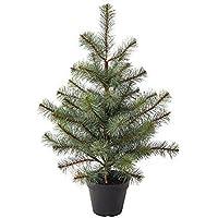 IKEA/イケア FEJKA:人工観葉植物55 cm クリスマスツリー (404.015.57)