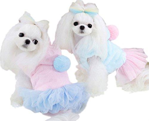 (Meilleur reve)メイヤーリーブ 小型犬 中型犬...