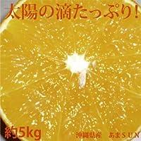 沖縄県産 あまSUN 約5kg  販売は12月28日まで